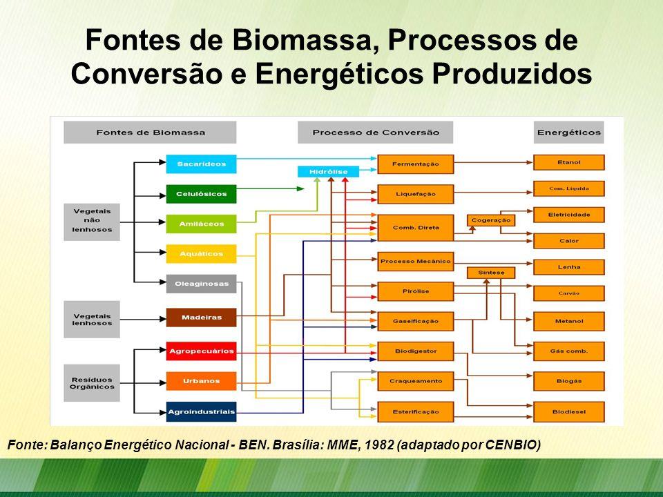 Fontes de Biomassa, Processos de Conversão e Energéticos Produzidos Fonte: Balanço Energético Nacional - BEN. Brasília: MME, 1982 (adaptado por CENBIO