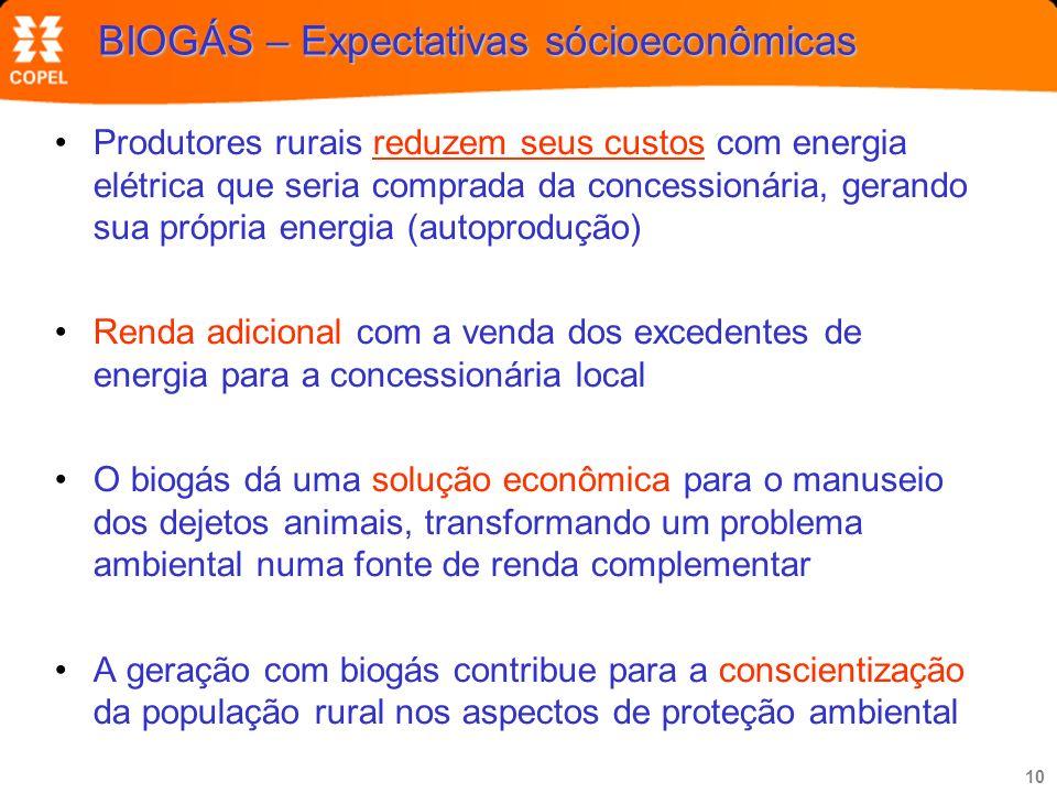 10 BIOGÁS – Expectativas sócioeconômicas Produtores rurais reduzem seus custos com energia elétrica que seria comprada da concessionária, gerando sua