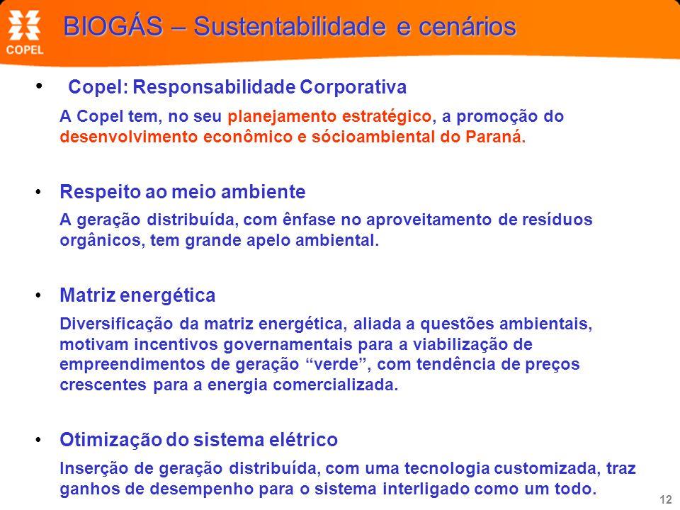 12 BIOGÁS – Sustentabilidade e cenários Copel: Responsabilidade Corporativa A Copel tem, no seu planejamento estratégico, a promoção do desenvolviment