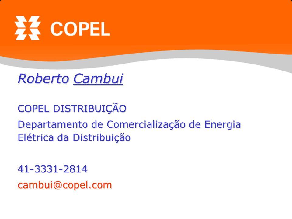 Roberto Cambui COPEL DISTRIBUIÇÃO Departamento de Comercialização de Energia Elétrica da Distribuição 41-3331-2814cambui@copel.com