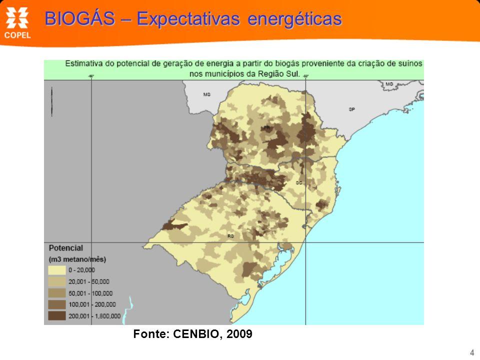 4 BIOGÁS – Expectativas energéticas Fonte: CENBIO, 2009