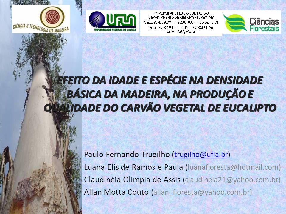 Paulo Fernando Trugilho (trugilho@ufla.br)trugilho@ufla.br Luana Elis de Ramos e Paula (luanafloresta@hotmail.com) Claudinéia Olímpia de Assis (claudi