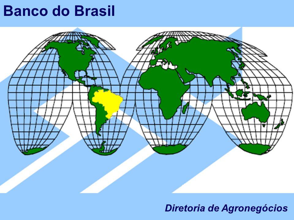 A importância do Agronegócio; O BB e o Agronegócio; A Diretoria de Agronegócios Diretoria de Agronegócios Banco do Brasil