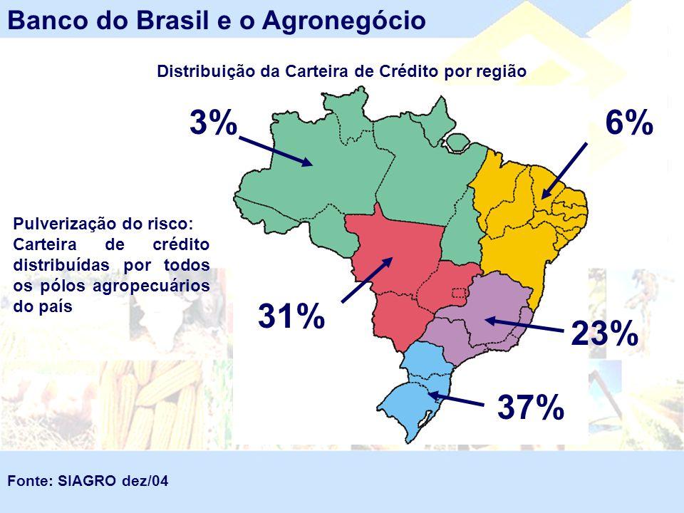 Banco do Brasil e o Agronegócio 3%6% 31% 23% 37% Distribuição da Carteira de Crédito por região Fonte: SIAGRO dez/04 Pulverização do risco: Carteira d