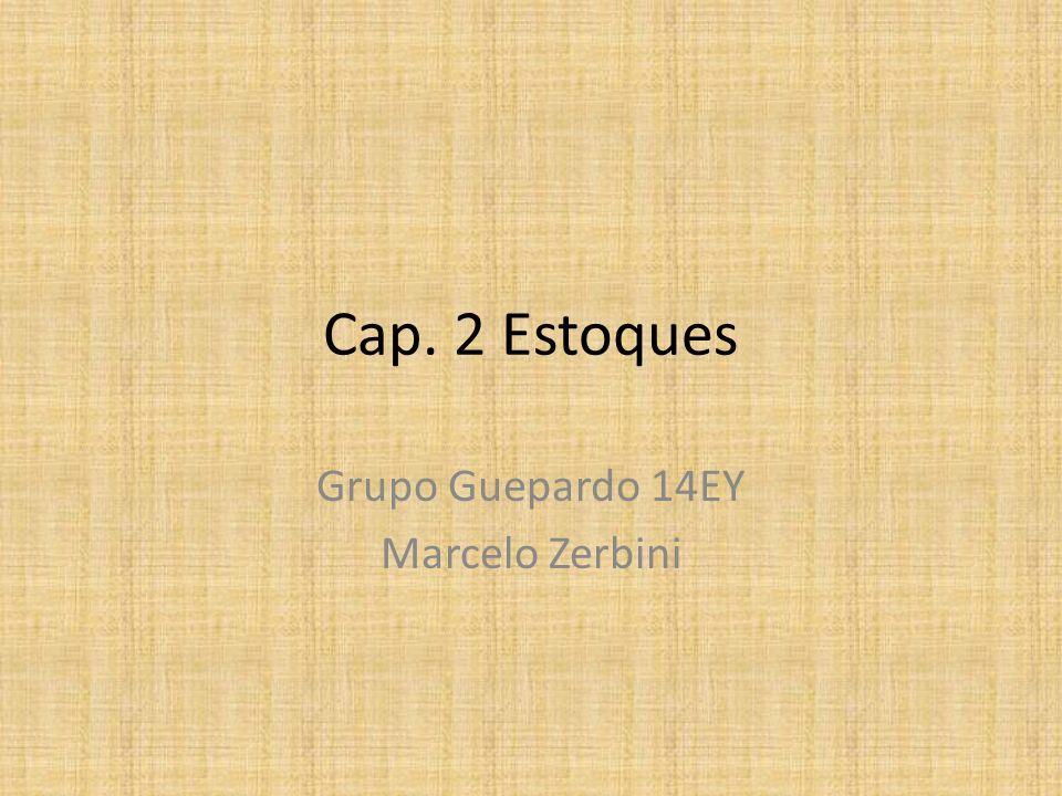 Cap. 2 Estoques Grupo Guepardo 14EY Marcelo Zerbini