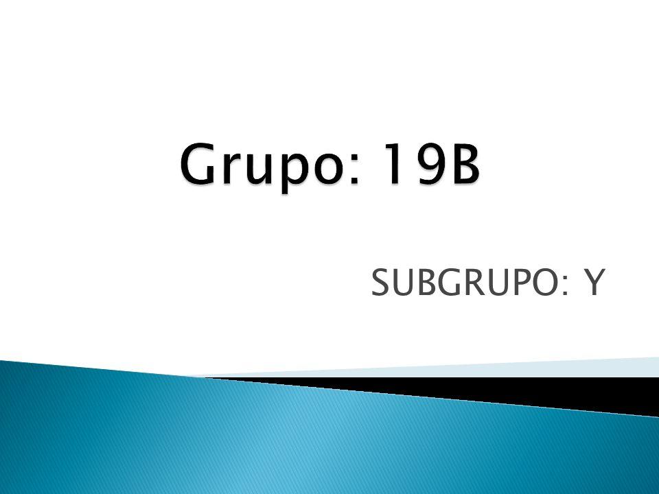 SUBGRUPO: Y