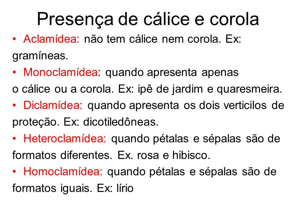 Presença de cálice e corola Aclamídea: não tem cálice nem corola. Ex: gramíneas. Monoclamídea: quando apresenta apenas o cálice ou a corola. Ex: ipê d