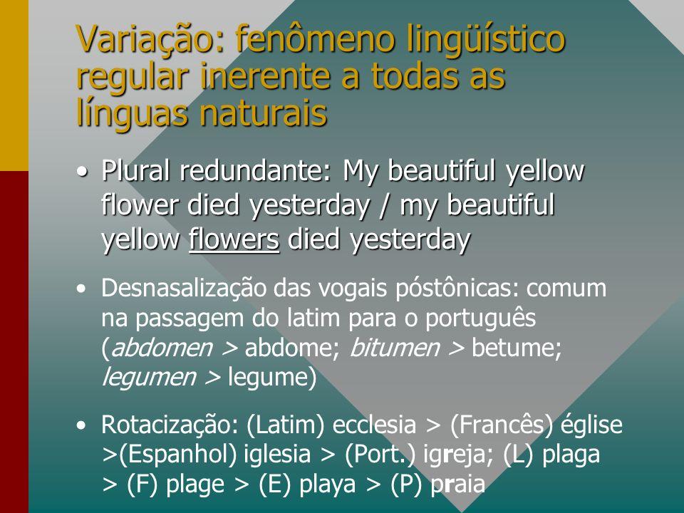 Variação: fenômeno lingüístico regular inerente a todas as línguas naturais Plural redundante: My beautiful yellow flower died yesterday / my beautifu