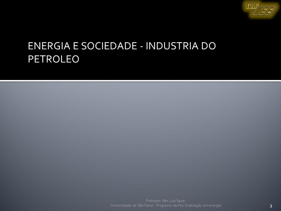 Professor Ildo Luís Sauer Universidade de São Paulo - Programa de Pós Graduação em energia 3 ENERGIA E SOCIEDADE - INDUSTRIA DO PETROLEO 3 Professor I