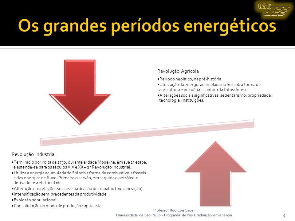 Professor Ildo Luís Sauer Universidade de São Paulo - Programa de Pós Graduação em energia 4 Professor Ildo Luís Sauer Universidade de São Paulo - Pro