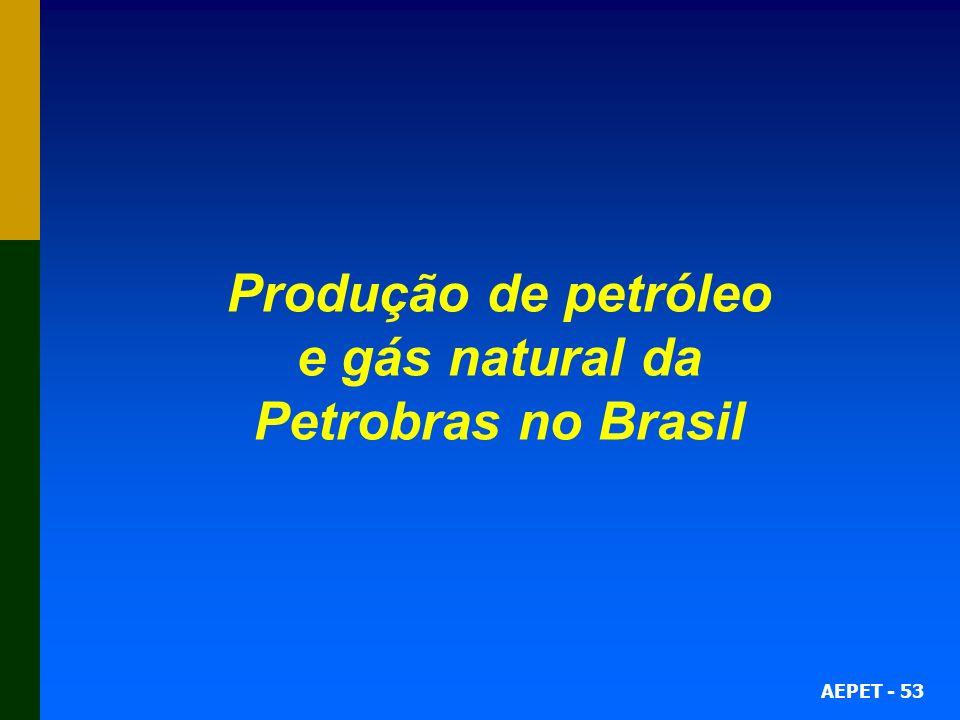 AEPET - 53 Produção de petróleo e gás natural da Petrobras no Brasil