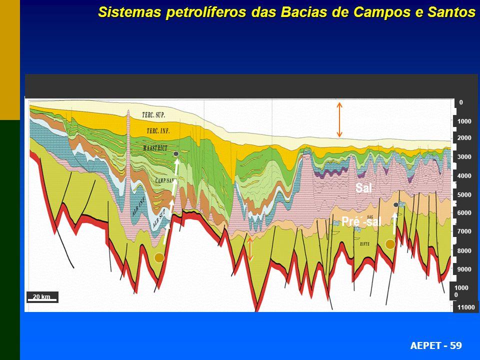 AEPET - 59 Sistemas petrolíferos das Bacias de Campos e Santos 20 km 1000 2000 3000 4000 5000 6000 7000 8000 9000 1000 0 11000 0 Sal Lâmina dágua atua
