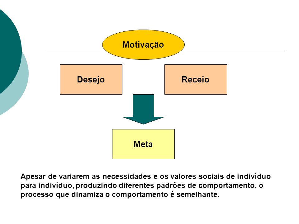 Motivação DesejoReceio Meta Apesar de variarem as necessidades e os valores sociais de indivíduo para indivíduo, produzindo diferentes padrões de comp