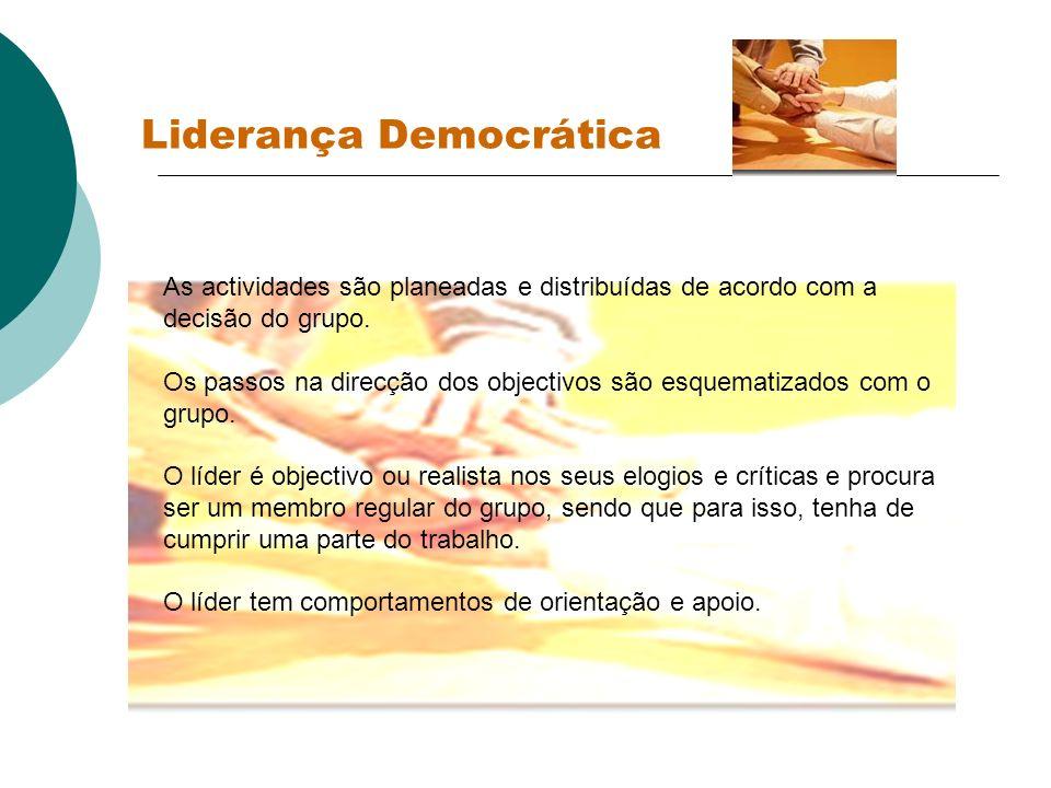 Liderança Democrática As actividades são planeadas e distribuídas de acordo com a decisão do grupo. Os passos na direcção dos objectivos são esquemati