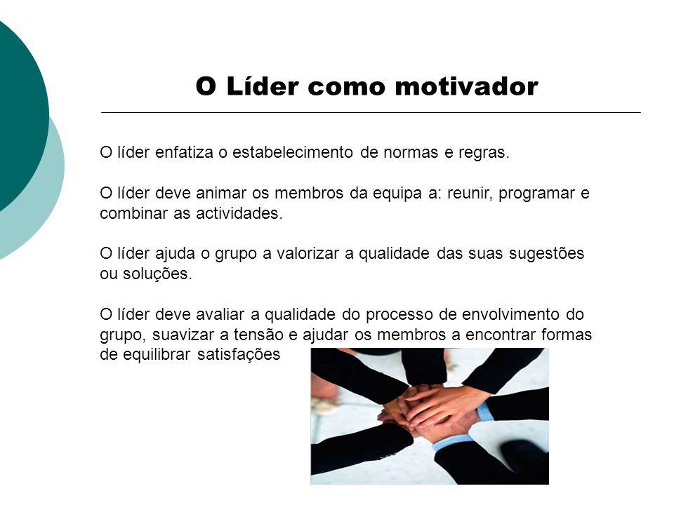 O líder enfatiza o estabelecimento de normas e regras. O líder deve animar os membros da equipa a: reunir, programar e combinar as actividades. O líde