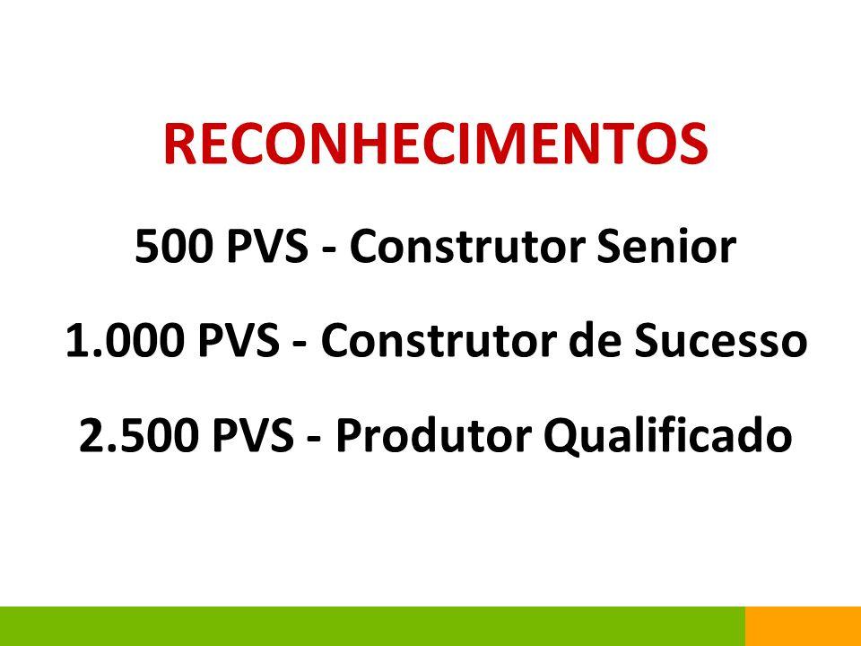 RECONHECIMENTOS 500 PVS - Construtor Senior 1.000 PVS - Construtor de Sucesso 2.500 PVS - Produtor Qualificado