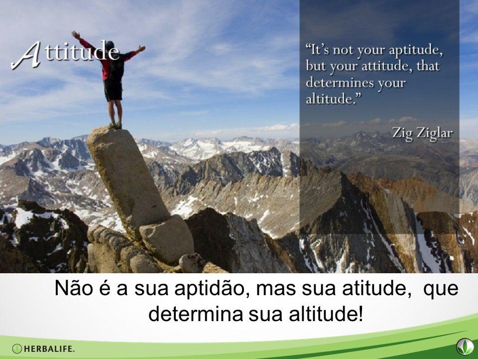 Não é a sua aptidão, mas sua atitude, que determina sua altitude!