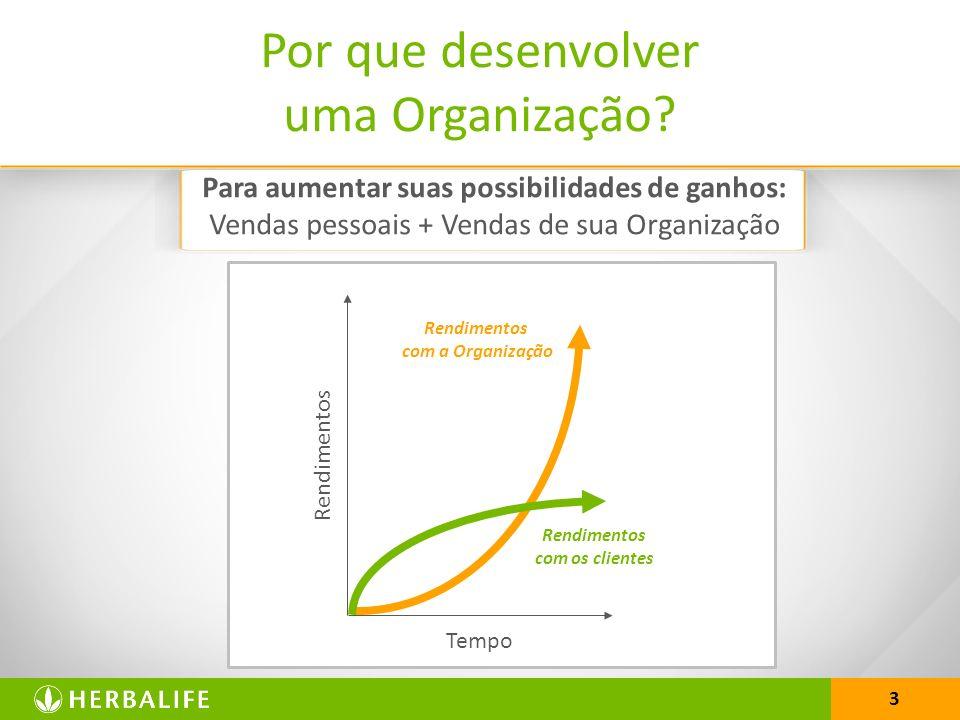 3 Por que desenvolver uma Organização? Rendimentos Tempo Rendimentos com os clientes Rendimentos com a Organização Para aumentar suas possibilidades d