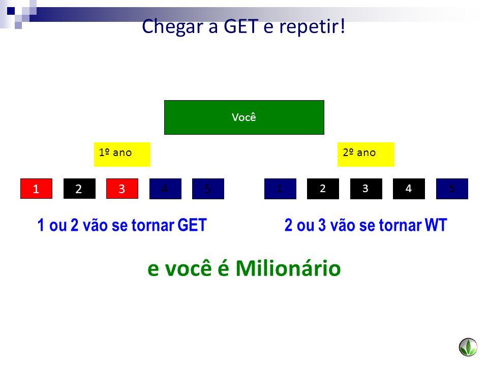 Você 23541 12 45 3 1º ano2º ano 1 ou 2 vão se tornar GET e você é Milionário 2 ou 3 vão se tornar WT Chegar a GET e repetir!