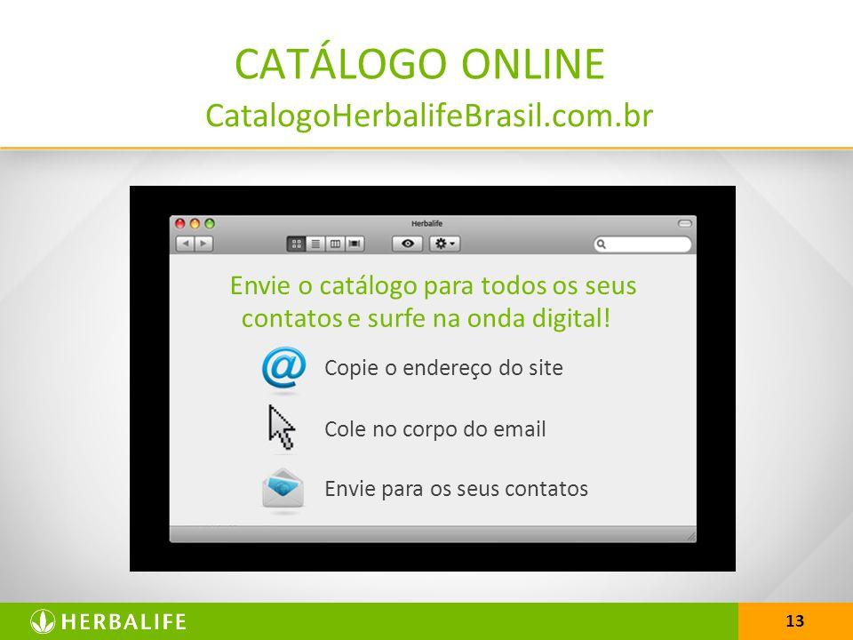 13 Envie o catálogo para todos os seus contatos e surfe na onda digital.