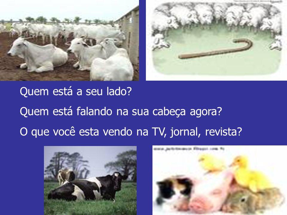 Quem está a seu lado? Quem está falando na sua cabeça agora? O que você esta vendo na TV, jornal, revista?
