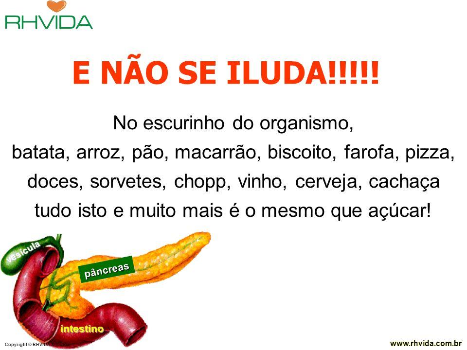Copyright © RHVIDA S/C Ltda. www.rhvida.com.br Copyright © RHVIDA S/C Ltda. www.rhvida.com.br pâncreas intestino vesícula No escurinho do organismo, b