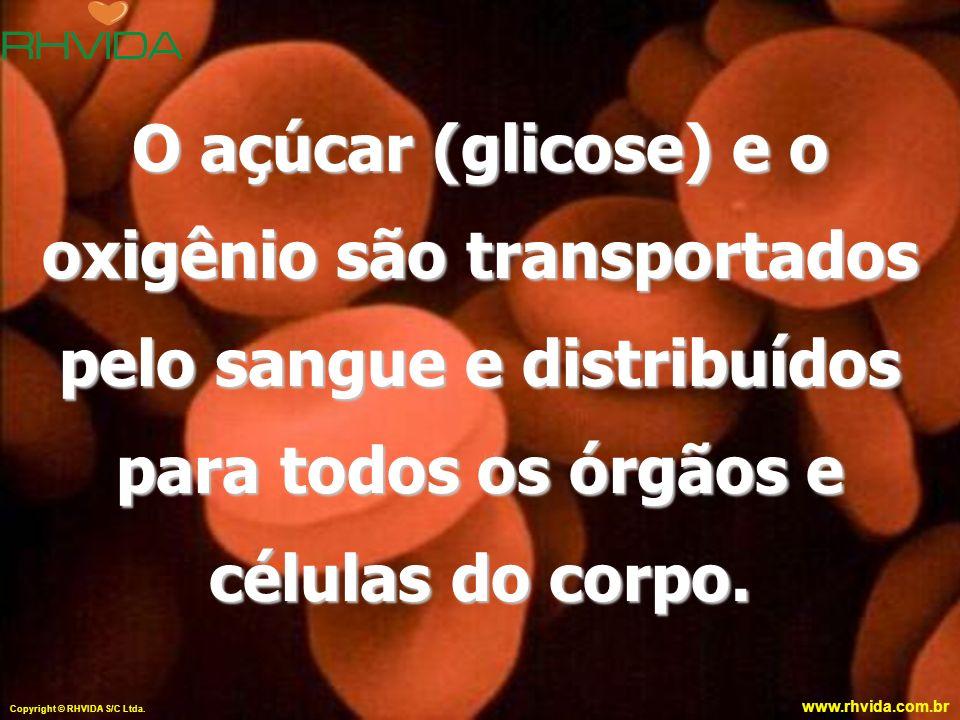 www.rhvida.com.br O açúcar (glicose) e o oxigênio são transportados pelo sangue e distribuídos para todos os órgãos e células do corpo. Copyright © RH