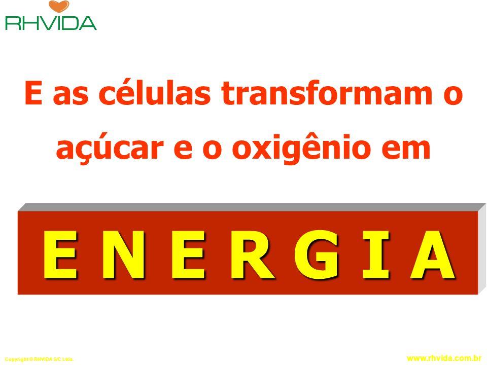 Copyright © RHVIDA S/C Ltda. www.rhvida.com.br E as células transformam o açúcar e o oxigênio em E N E R G I A