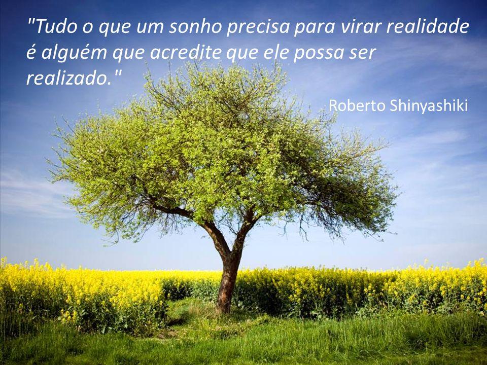 27 Tudo o que um sonho precisa para virar realidade é alguém que acredite que ele possa ser realizado. Roberto Shinyashiki