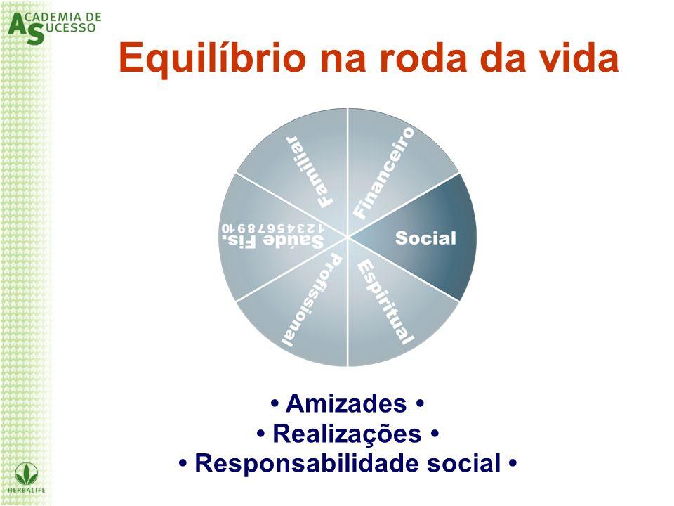 Equilíbrio na roda da vida Amizades Realizações Responsabilidade social