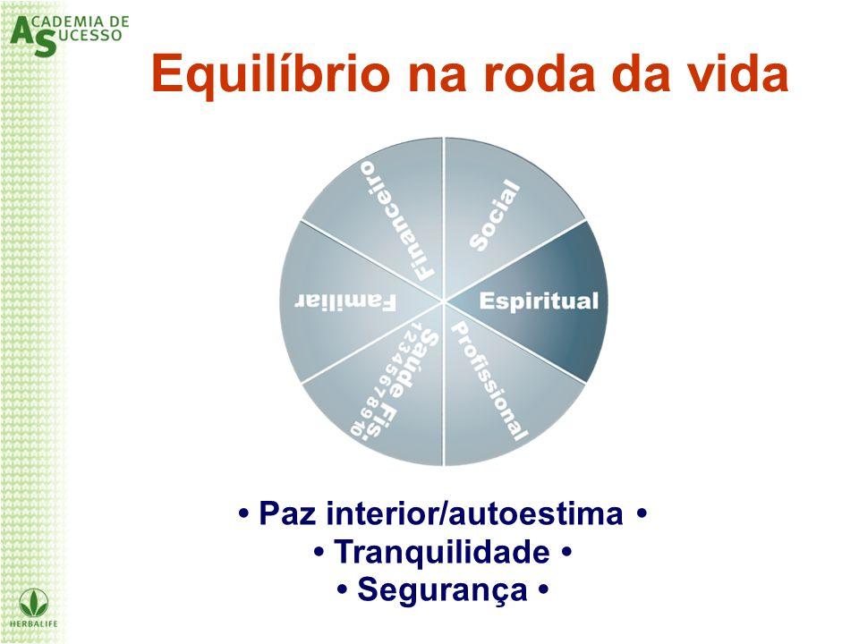 Equilíbrio na roda da vida Paz interior/autoestima Tranquilidade Segurança