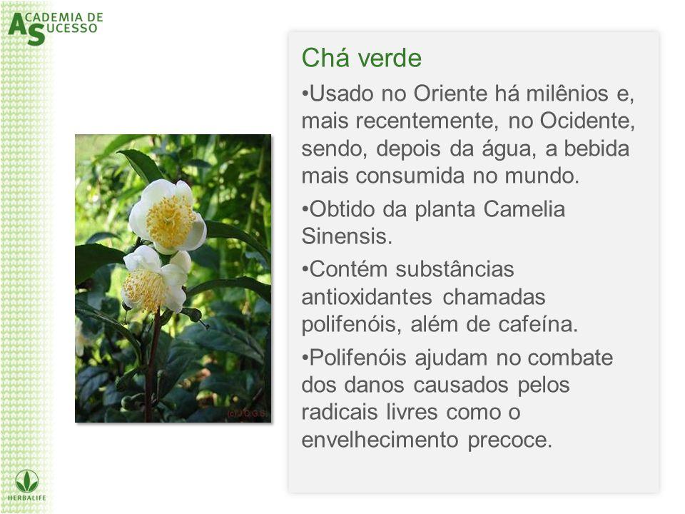 Chá verde Usado no Oriente há milênios e, mais recentemente, no Ocidente, sendo, depois da água, a bebida mais consumida no mundo. Obtido da planta Ca