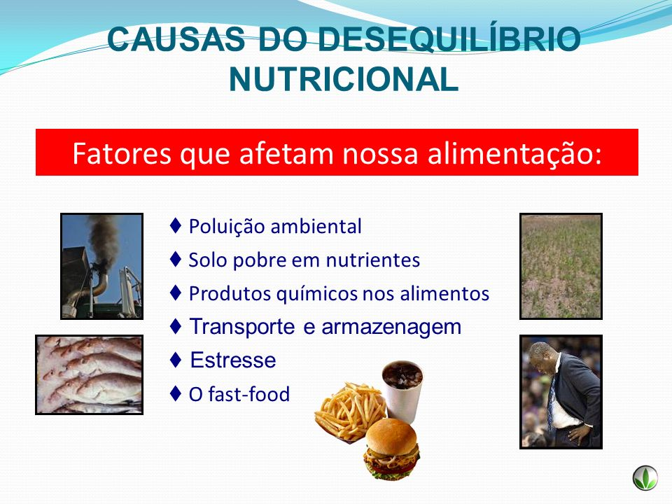 Fatores que afetam nossa alimentação: Poluição ambiental Solo pobre em nutrientes Produtos químicos nos alimentos Transporte e armazenagem Estresse O