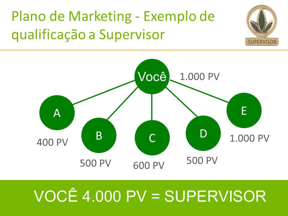 28 VOCÊ 4.000 PV = SUPERVISOR Você C D B 1.000 PV 400 PV 600 PV A E 500 PV Plano de Marketing - Exemplo de qualificação a Supervisor