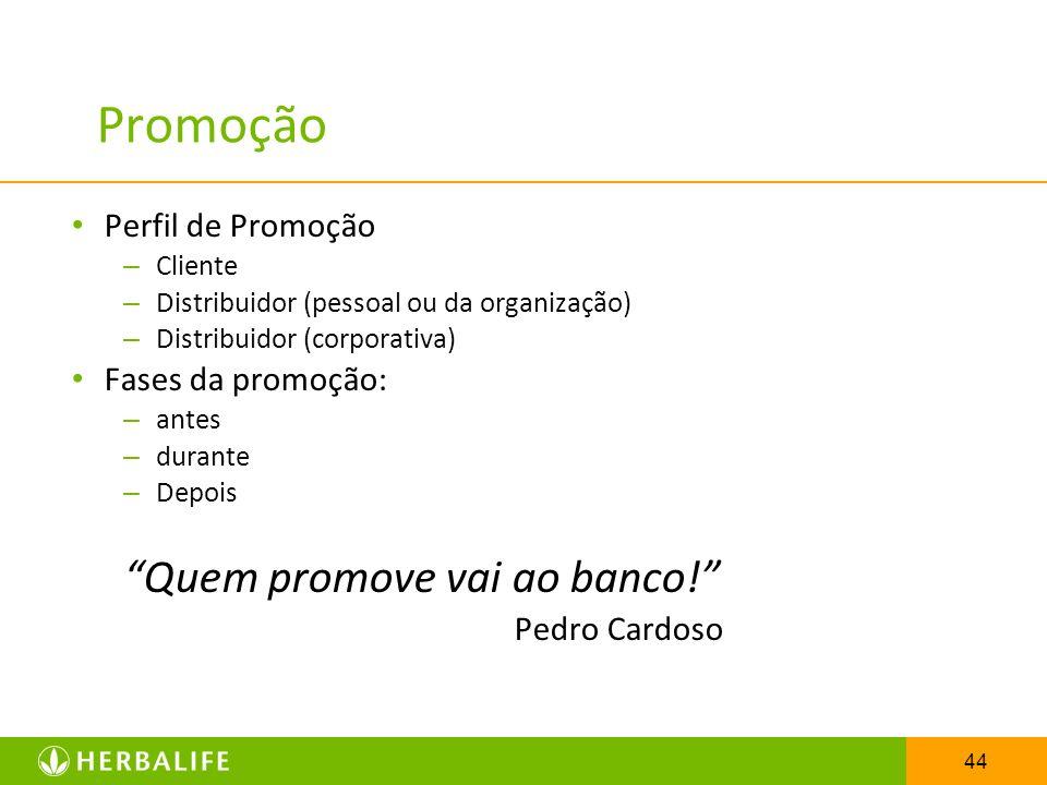 44 Promoção Perfil de Promoção – Cliente – Distribuidor (pessoal ou da organização) – Distribuidor (corporativa) Fases da promoção: – antes – durante