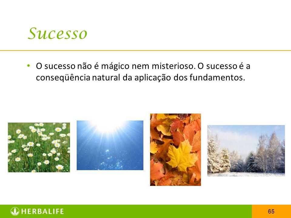 65 Sucesso O sucesso não é mágico nem misterioso. O sucesso é a conseqüência natural da aplicação dos fundamentos.