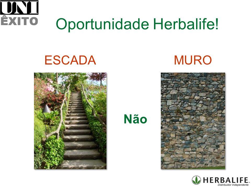 ESCADAMURO Não Oportunidade Herbalife!