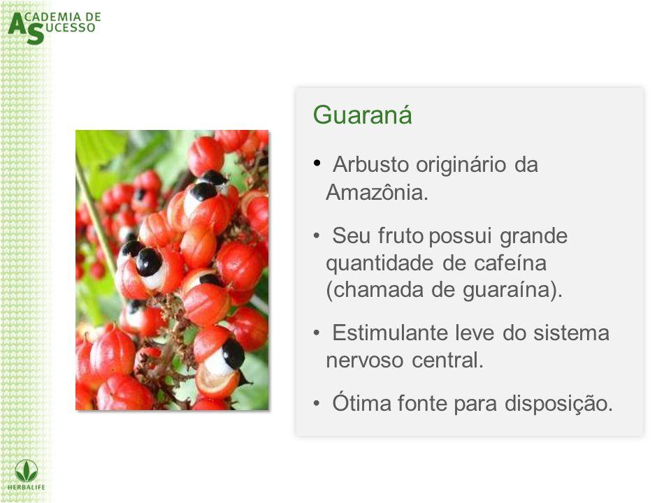 Guaraná Arbusto originário da Amazônia. Seu fruto possui grande quantidade de cafeína (chamada de guaraína). Estimulante leve do sistema nervoso centr