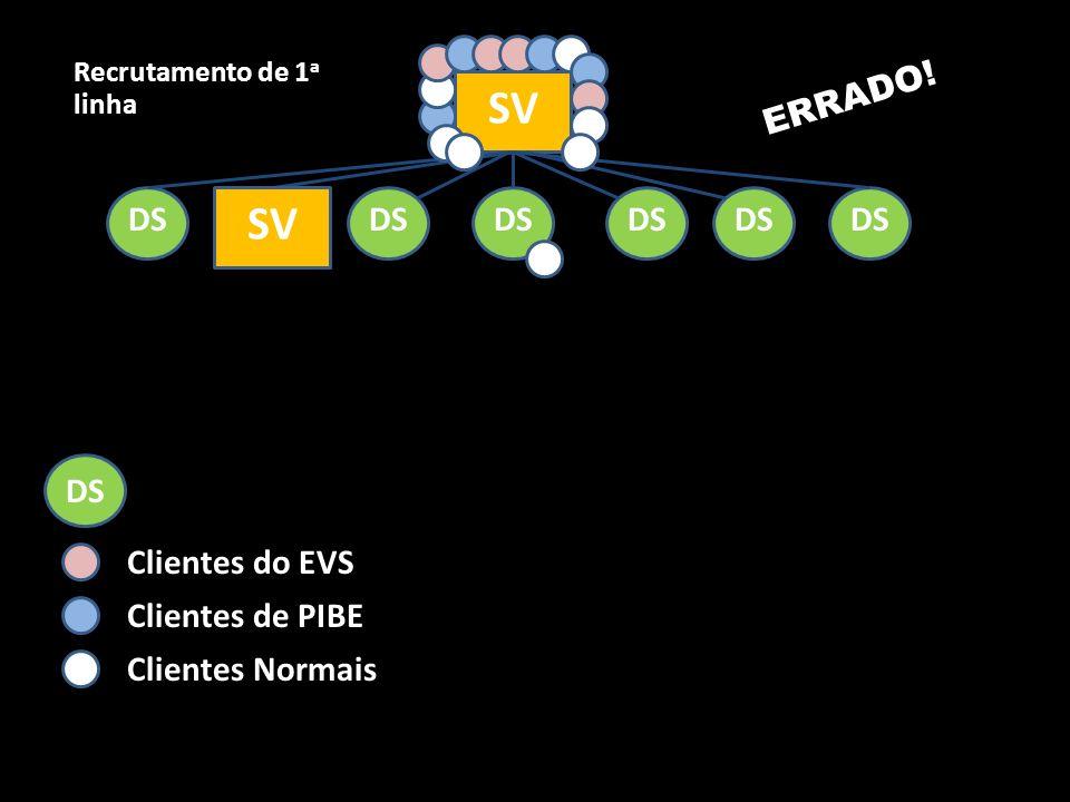 SV DS SV Recrutamento de 1 a linha ERRADO! DS Clientes do EVS Clientes de PIBE Clientes Normais