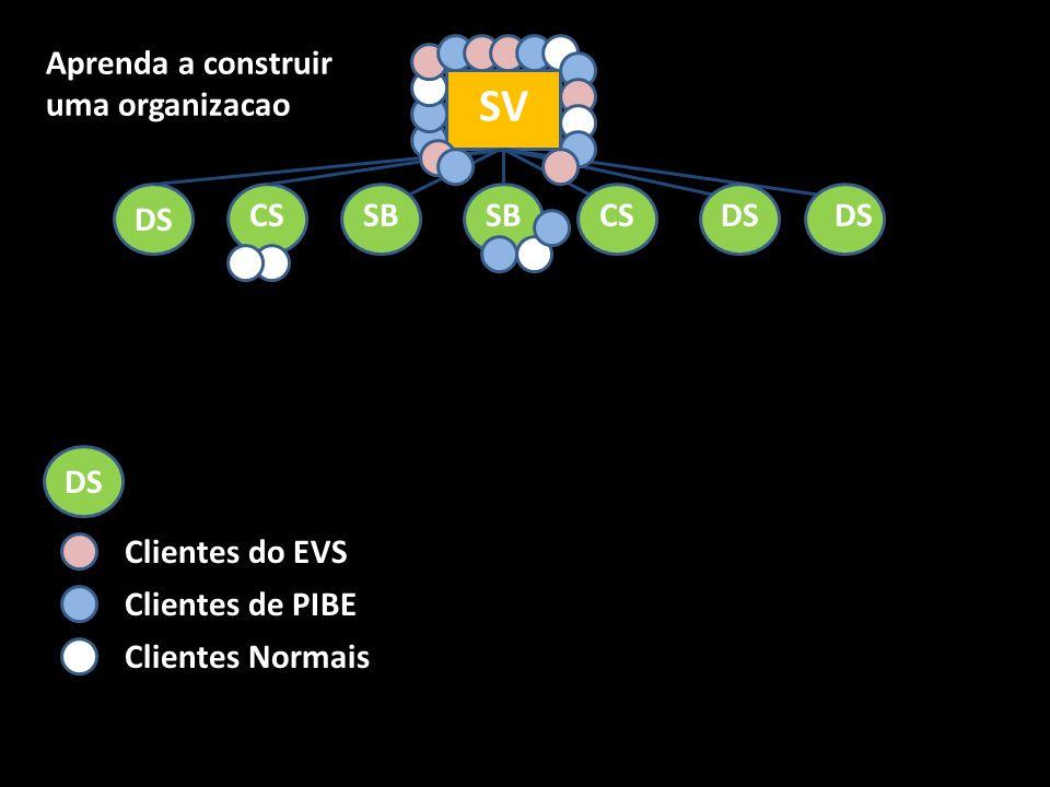 SV SB CS DS Aprenda a construir uma organizacao DS Clientes do EVS Clientes de PIBE Clientes Normais