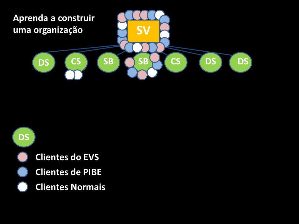 SV SB CS DS Clientes do EVS Clientes de PIBE Clientes Normais Aprenda a construir uma organização