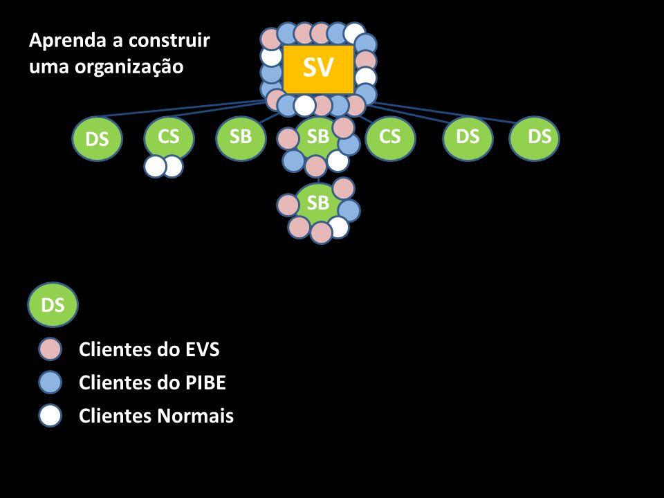 SV SB CS DS SB DS Clientes do EVS Clientes do PIBE Clientes Normais Aprenda a construir uma organização