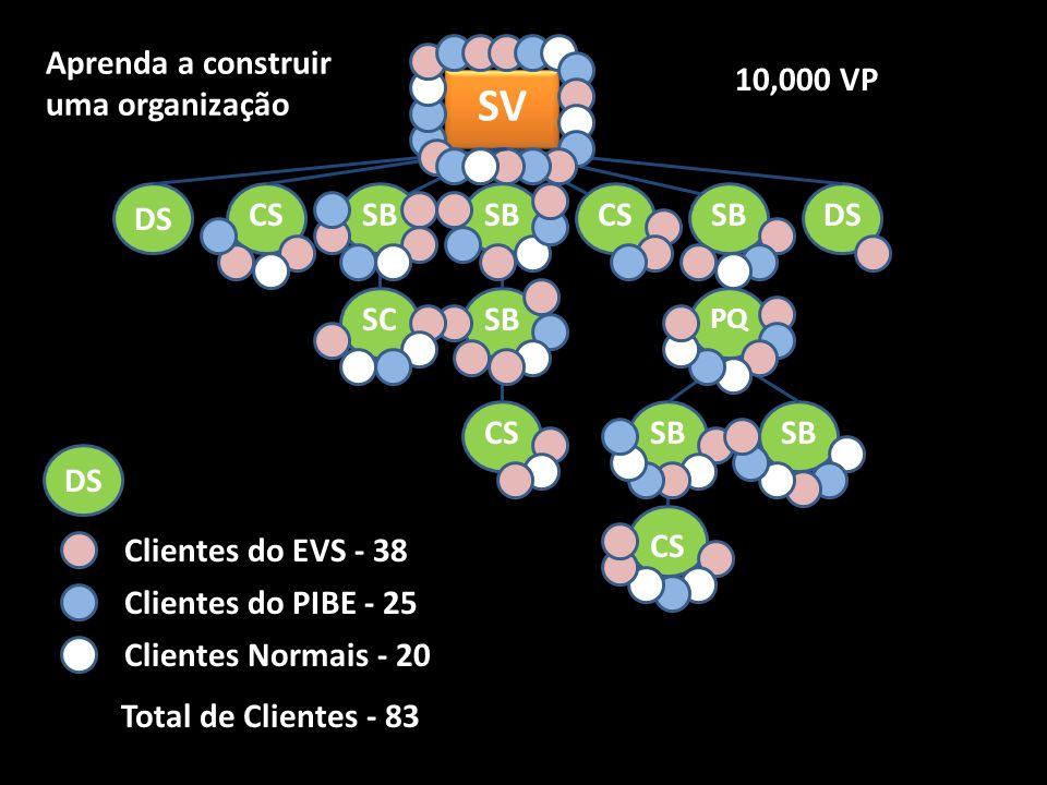 SV SB CSDSCSSB PQ SB CS SBSC DS 10,000 VP DS Clientes do EVS - 38 Clientes do PIBE - 25 Clientes Normais - 20 Total de Clientes - 83 Aprenda a construir uma organização