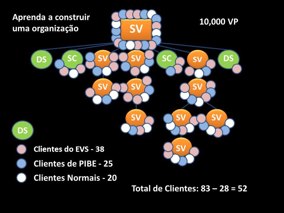 SV SCDSSC SV Total de Clientes: 83 – 28 = 52 DS 10,000 VP DS Clientes do EVS - 38 Clientes de PIBE - 25 Clientes Normais - 20 Aprenda a construir uma organização