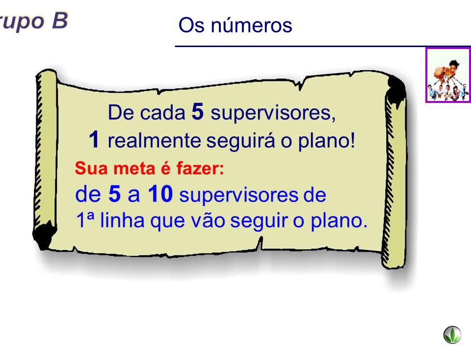 De cada 5 supervisores, 1 realmente seguirá o plano! Os números Sua meta é fazer: de 5 a 10 supervisores de 1ª linha que vão seguir o plano.