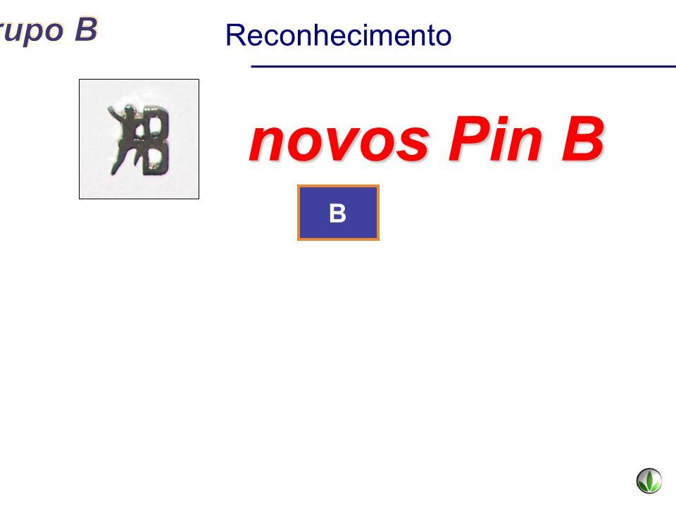 B novos Pin B Reconhecimento