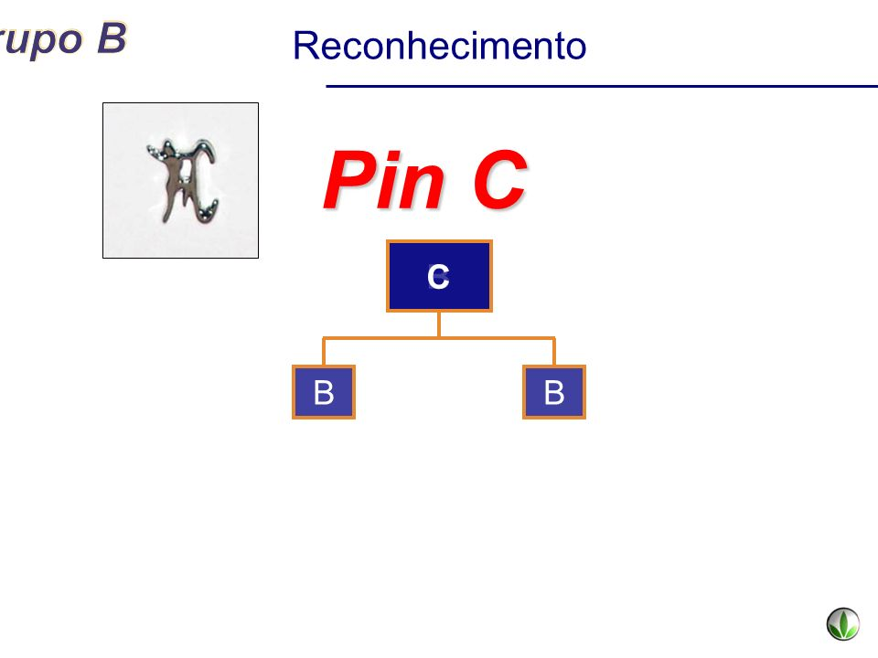 B Pin C BB Reconhecimento C