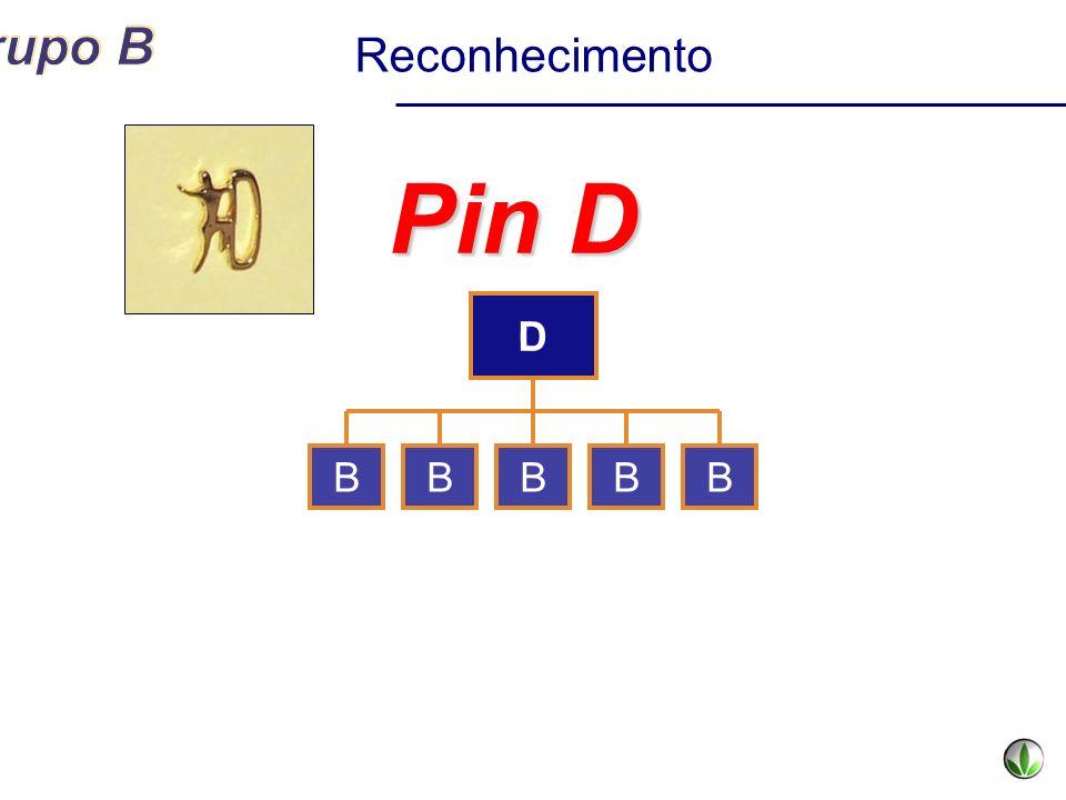 C Pin D BBBBB Reconhecimento D