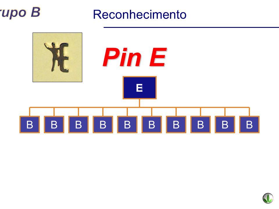 D Pin E BBBBBBBBBB Reconhecimento E