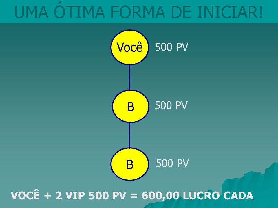 Você UMA ÓTIMA FORMA DE INICIAR! B 500 PV VOCÊ + 2 VIP 500 PV = 600,00 LUCRO CADA B 500 PV